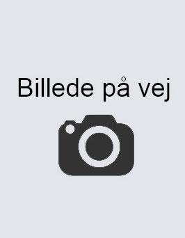 billede-pa-vej2